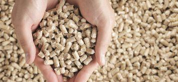 Holzpellets: Ein vielseitiger Beitrag zur Dekarbonisierung im Energiesektor in Europa